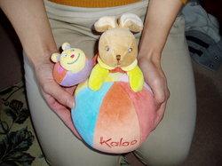 kaloo-1.jpg